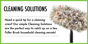 blog-cat-cleaning-solutions