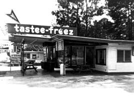 tasteefreeze